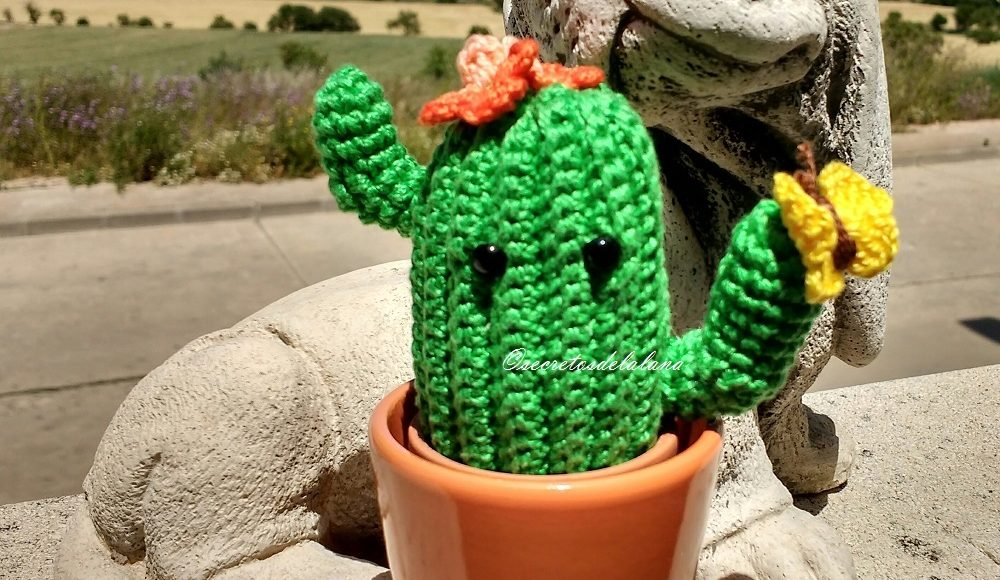 Patrón Cactus de amigurumi | Cacto de crochê, Frutas de crochê ... | 580x1000